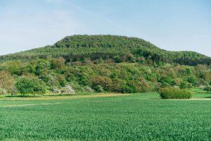 département Gard agriculture