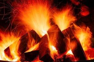 bois de chauffage