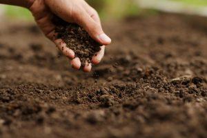 travailler la terre jardinage